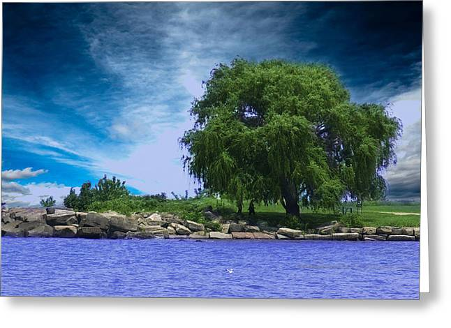 Recently Sold -  - Willow Lake Greeting Cards - Lake View Greeting Card by Samantha Purea