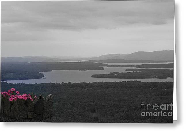 Marcia Lee Jones Greeting Cards - Lake Winnipesaukee      Sold Greeting Card by Marcia Lee Jones