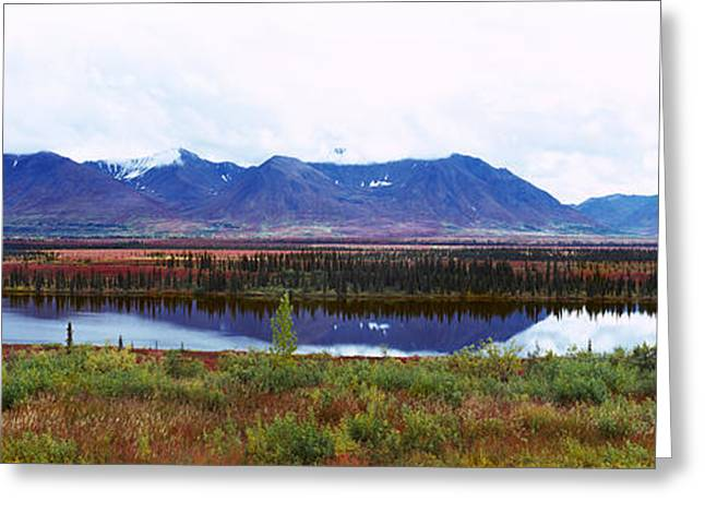 Denali National Park Greeting Cards - Lake With A Mountain Range Greeting Card by Panoramic Images