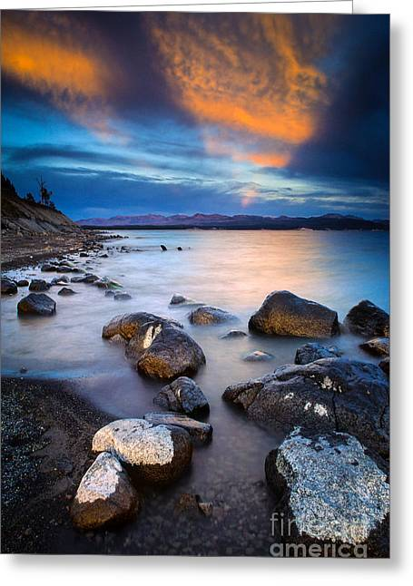 Nps Greeting Cards - Lake Yellowstone Greeting Card by Inge Johnsson