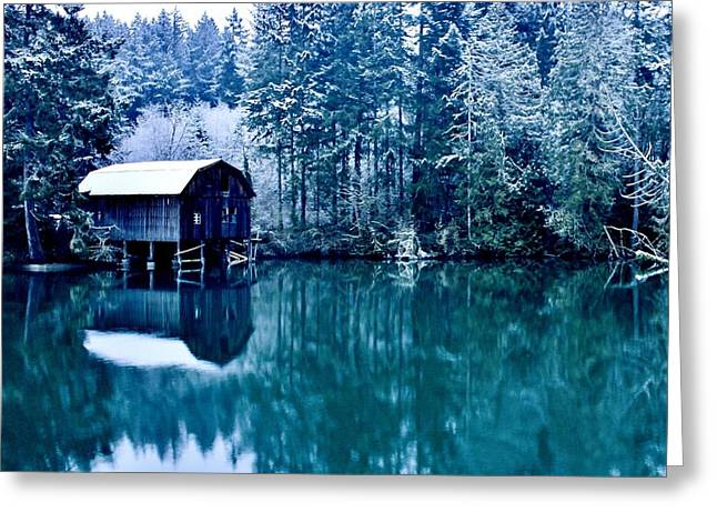 Fir Trees Greeting Cards - Lakebay Winter Greeting Card by Benjamin Yeager