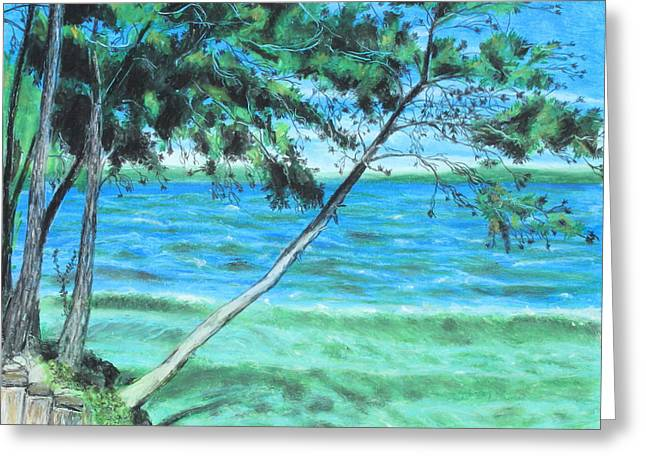 Tree Lines Pastels Greeting Cards - Lakeland 3 Greeting Card by Jeanne Fischer