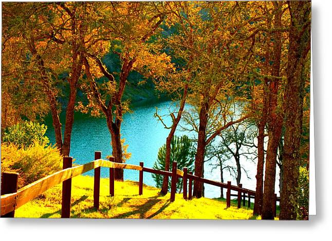 Lake Berryessa Greeting Cards - Lakeshore Lane Greeting Card by Stephen Edwards