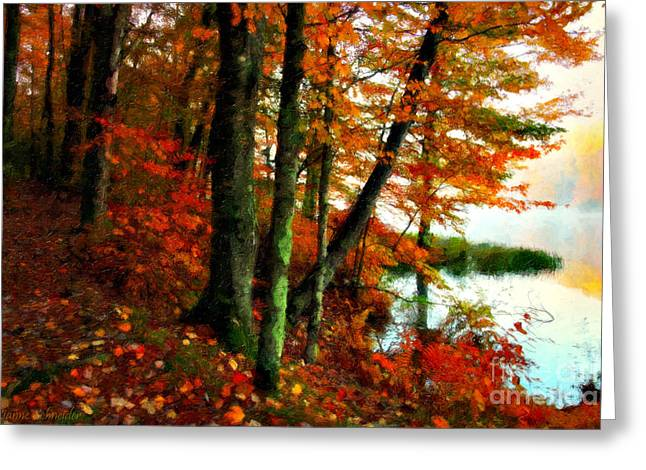 Peaceful Scenery Greeting Cards - Lakeside Beauty Greeting Card by Lianne Schneider