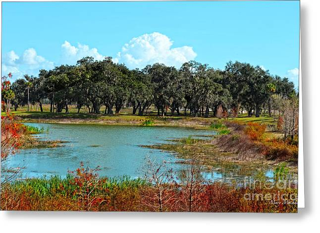 Ocala Greeting Cards - Lakeside in Sumter County Greeting Card by Mary Machare