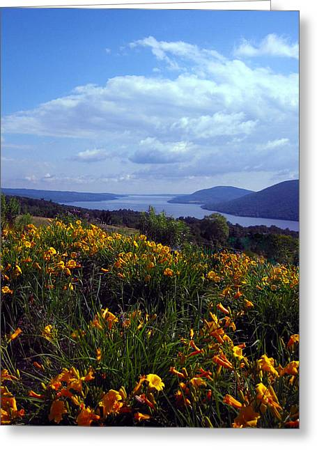 Canandaigua Lake Greeting Cards - Lakeside Lilies Greeting Card by Mary Cloninger