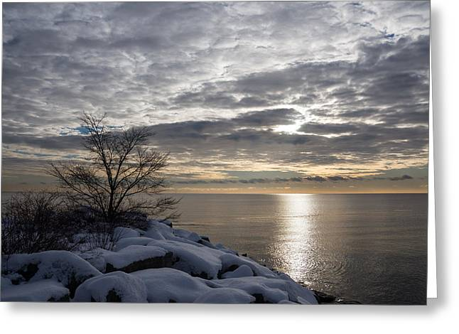 Wintry Greeting Cards - Lakeside Silver - Winter Morning Light Greeting Card by Georgia Mizuleva