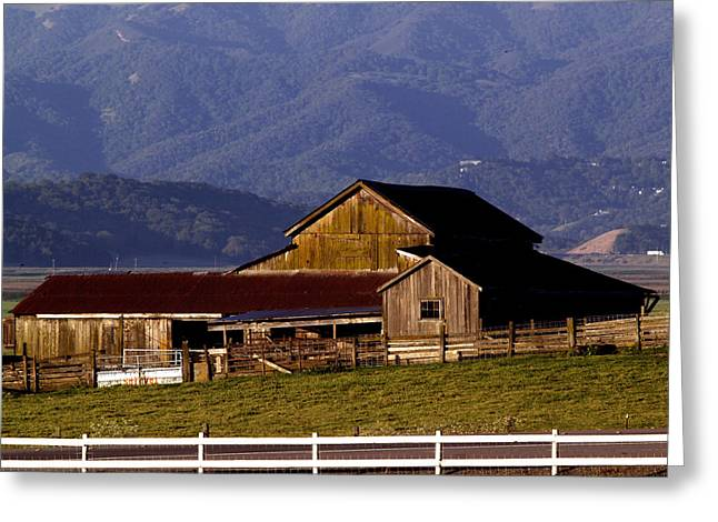 Sonoma County Greeting Cards - Lakeville Barn Greeting Card by Bill Gallagher