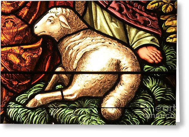 Religious Artwork Photographs Greeting Cards - Lamb Of God Greeting Card by Adam Jewell