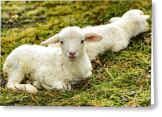 Isaiah Greeting Cards - Lambs and Scripture Greeting Card by Thomas R Fletcher