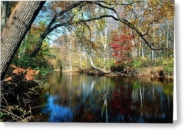 Fallen Leaf Greeting Cards - Lamington River at Tewksbury  Greeting Card by George Oze