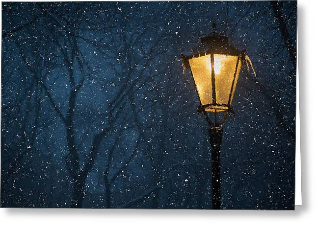 Snowy Night Night Greeting Cards - Lamp Light In Snow  Greeting Card by Paul Bucknall