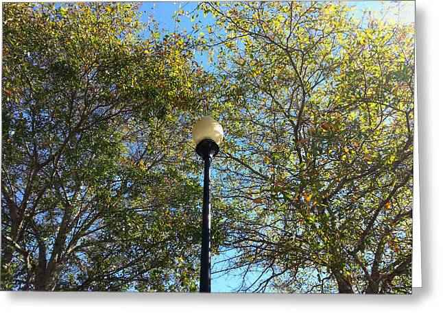 Turning Leaves Greeting Cards - Lamp Post and Fall foliage Greeting Card by Karen Rhodes