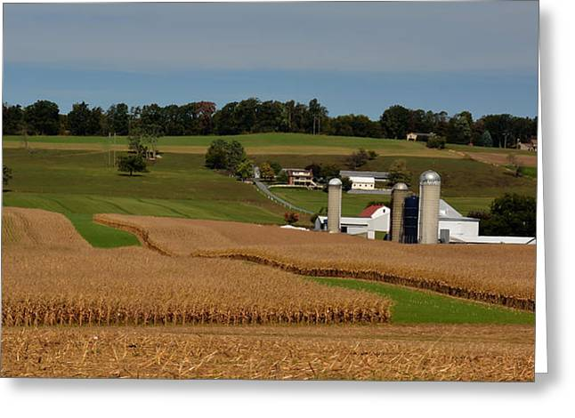 Amish Farms Greeting Cards - Lancaster County Farm Greeting Card by William Jobes