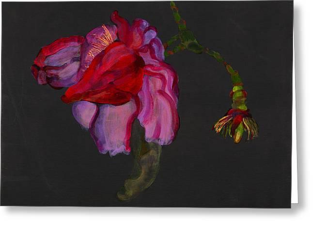 Lanarth Magnolia Greeting Card by Deborah Barton
