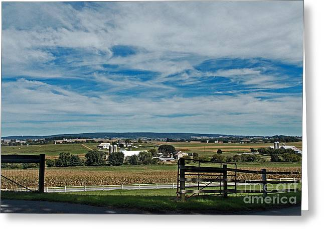 Amish Farms Greeting Cards - Lancaster County Greeting Card by Skip Willits