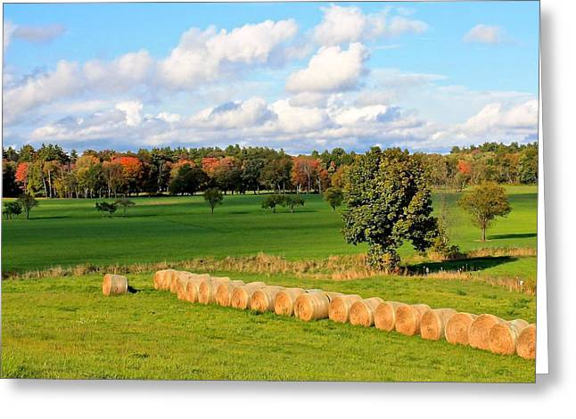 Central Ma Greeting Cards - Lancaster MA Farmland in Autumn 2 Greeting Card by Michael Saunders