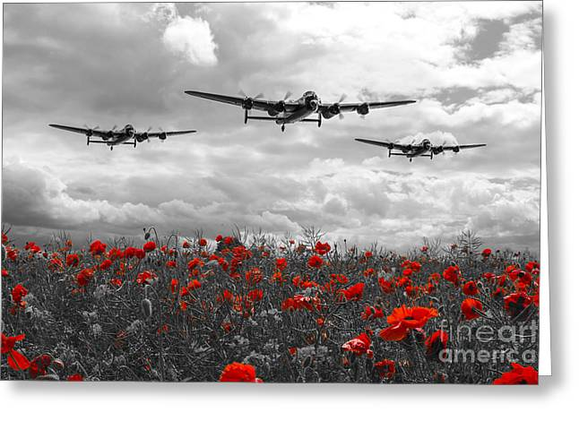 Approach Digital Art Greeting Cards - Lancaster Remembrance - Selective Greeting Card by J Biggadike