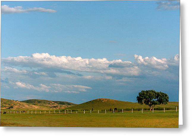 Yun Qing Fu Greeting Cards - Land of Big Sky Greeting Card by Qing