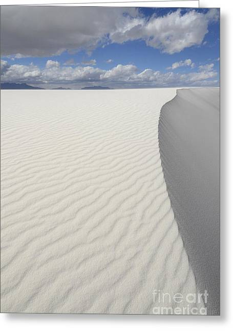Sand Patterns Greeting Cards - New Mexico Land of Dreams 1 Greeting Card by Bob Christopher