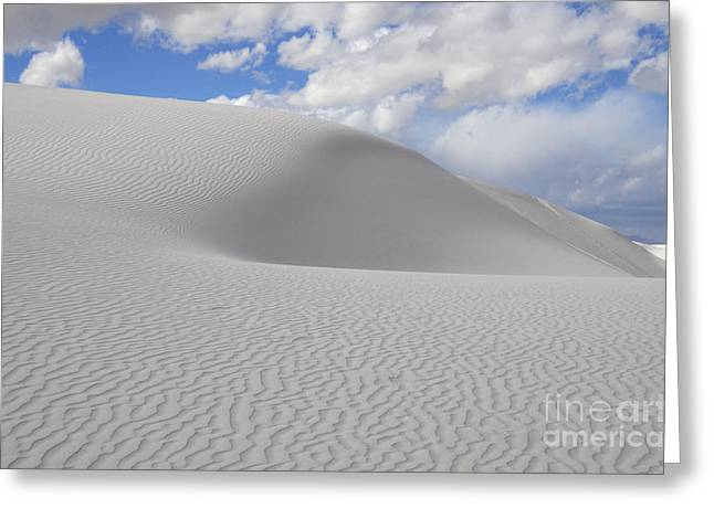 Sand Pattern Greeting Cards - New Mexico Land of Dreams 2 Greeting Card by Bob Christopher