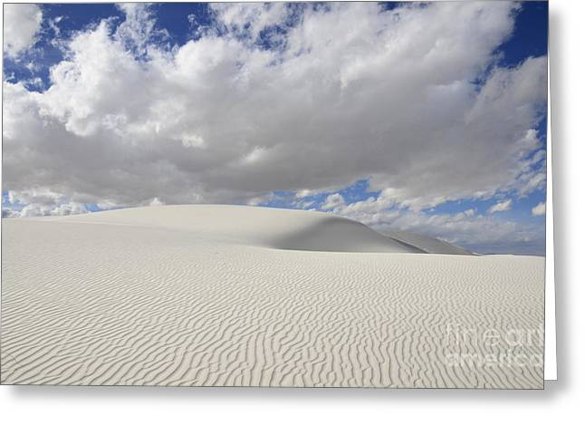 Sand Pattern Greeting Cards - New Mexico Land of Dreams 3 Greeting Card by Bob Christopher