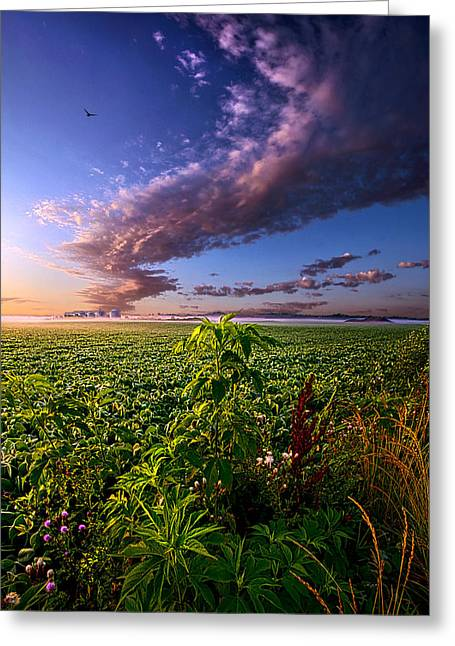 Farming Greeting Cards - Land of Plenty Greeting Card by Phil Koch