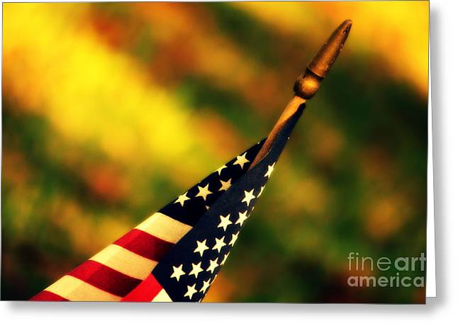 Flag Of Usa Greeting Cards - Land of the Free Greeting Card by Susanne Van Hulst