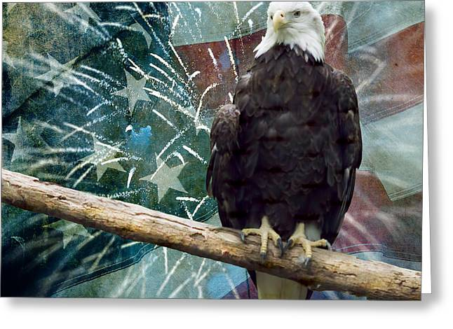 Land Of The Free Greeting Card by Terry Weaver