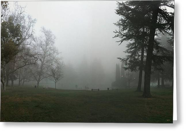 Outdoor Theater Greeting Cards - Land Park Amphitheater and Fog Greeting Card by Patrick Cosgrove