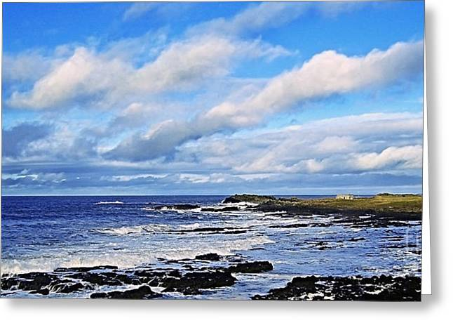 Prospects Greeting Cards - Land Sea and Sky Greeting Card by Nina Ficur Feenan