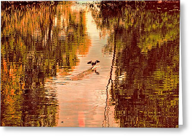 Landing Duck Absrtact Greeting Card by Leif Sohlman