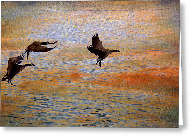 Sunset Posters Greeting Cards - Landing Greeting Card by Kathy Bassett