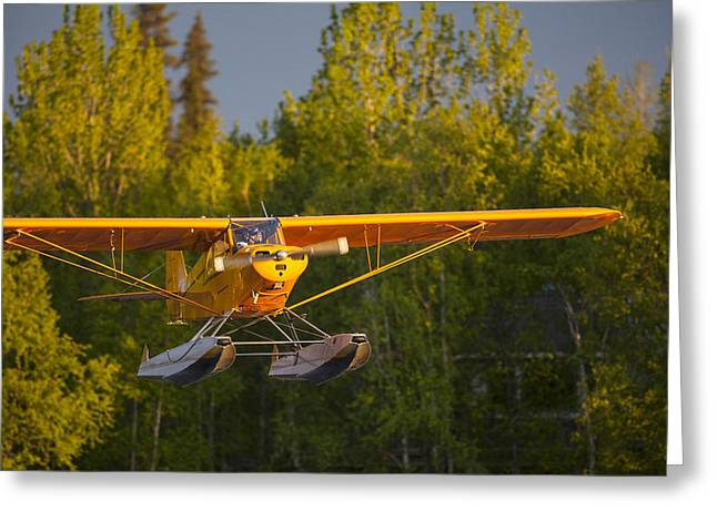 Piper Cub Greeting Cards - Landing Super Cub Greeting Card by Tim Grams