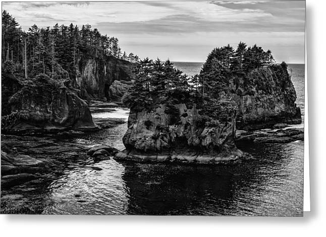 Cape Flattery Greeting Cards - Lands End Greeting Card by Brian Menasco