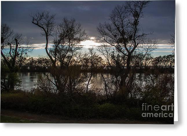 Landscape 23 W Sac Ca Greeting Card by Otri Park