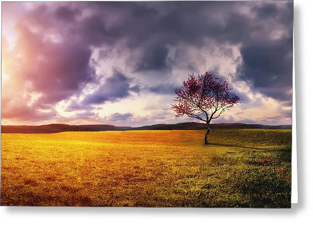 Summer Season Landscapes Greeting Cards - Landscape Greeting Card by Bess Hamiti
