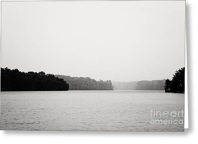 Ethereal White Trees Greeting Cards - Landscape Black and White Fog Greeting Card by Kim Fearheiley