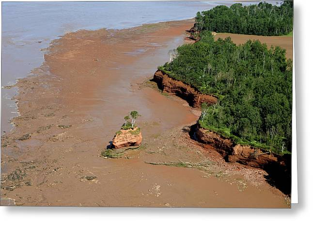Minas Basin Greeting Cards - Landscape Created By Tidal Forces Greeting Card by Bernard Dupuis