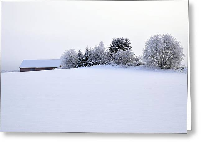 Landscape in winter Greeting Card by Conny Sjostrom