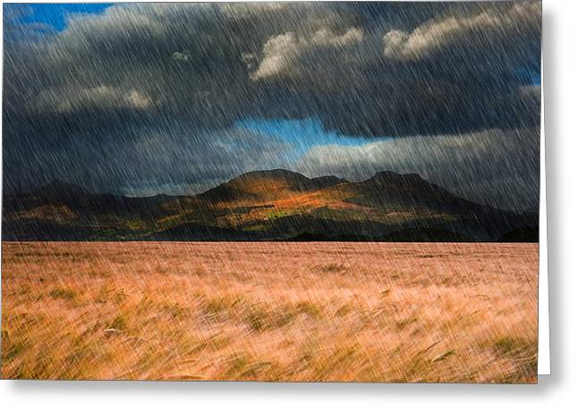 Hay Bales Greeting Cards - Landscape of windy wheat field in front of mountain range with d Greeting Card by Matthew Gibson