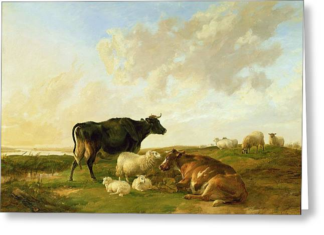 Herd Greeting Cards - Landscape With Cows And Sheep, 1850 Greeting Card by Thomas Sidney Cooper