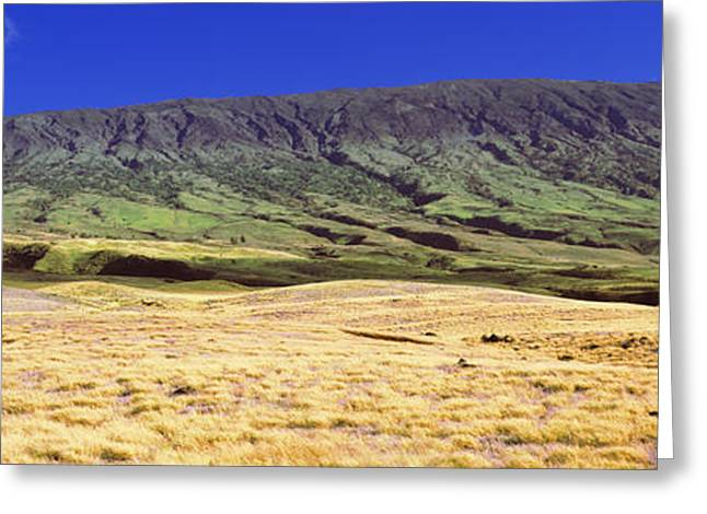 Kula Greeting Cards - Landscape With Haleakala Volcanic Greeting Card by Panoramic Images