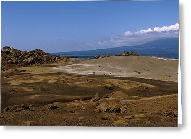 Galapagos Greeting Cards - Landscape With Ocean In The Background Greeting Card by Panoramic Images