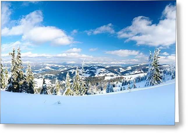 Landscape with Snow Covered Trees Greeting Card by Boon Mee