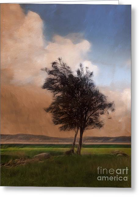 Open-air Greeting Cards - Landscape with Trees Greeting Card by Lutz Baar