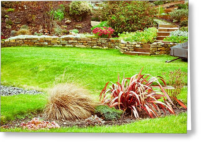 Stone Planter Greeting Cards - Landscaped garden Greeting Card by Tom Gowanlock
