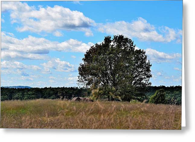 Hay Bales Greeting Cards - Landscapes 261 Greeting Card by Lawrence Hess