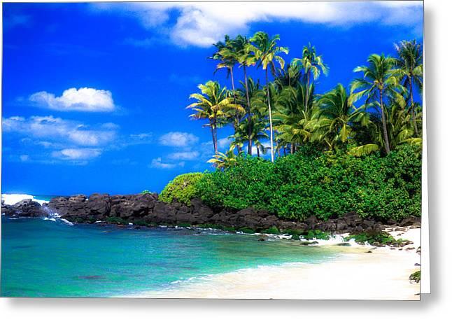 Laniakea Beach Greeting Cards - Laniakea Beach Oahu Greeting Card by Lisa Cortez