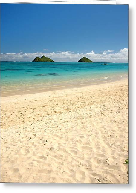 Lanikai Beach 2 - Oahu Hawaii Greeting Card by Brian Harig